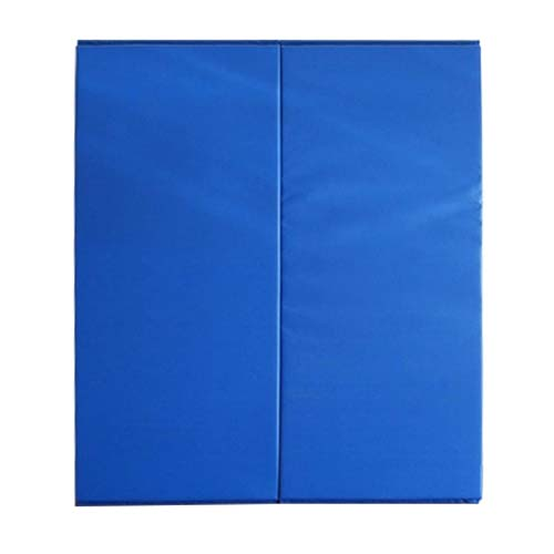 Blue Wall Mats for martial arts and gyms
