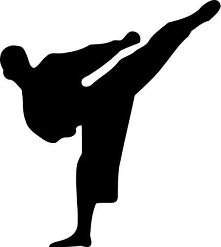 EVA interlocking karate mats
