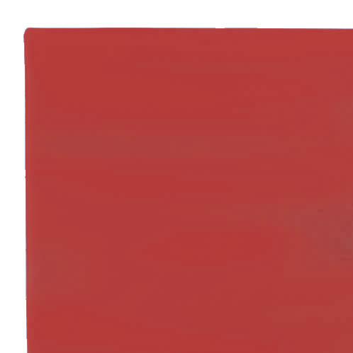 Red MMA Mats